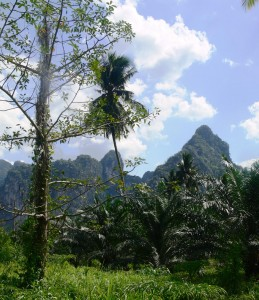 Khao-Sok_Nationalpark