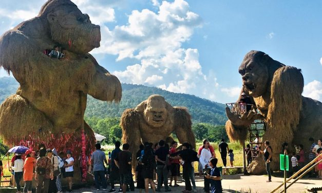 King Kong in Chiang Mai: Huay Tung Tao Lake